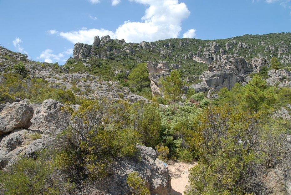 Berglandschap in de Languedoc zuidelijke uitlopers Massive Centrale foto Ben Kruijsen 2011213