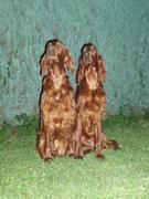 Rubin and Leena