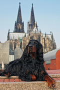 Cologne Cathedral and Isis