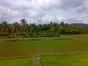 My gods own country (KERALA)