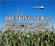GMO UFO