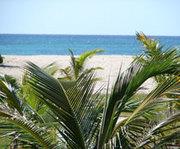 trinidad_reis1
