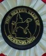 The Setter Club of Queensland