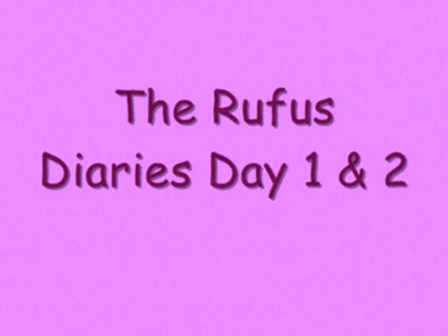 The Rufus Diaries Day 1  2