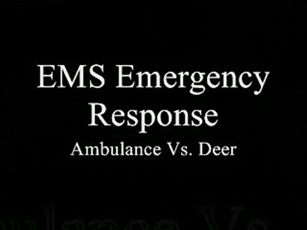 Ambulance vs. Deer