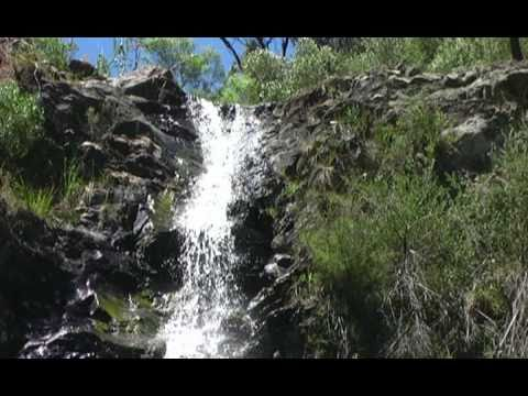 FIRE WATER: Australia's Industrial Fluoridation Disgrace (Part 1 of 9)