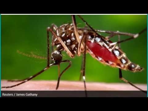 First West Nile Virus Death This Year Reported In Arizona
