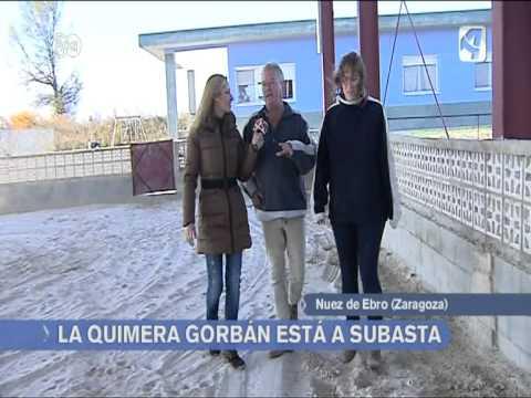 Subasta de las instalaciones hipicas y caninas de La Quimera-Gorban