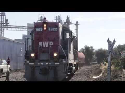 [HD] A Busy Day in Petaluma