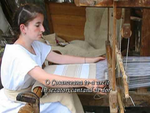 ZESTREA -MARIANA DOBRIN-versuri si imagin din expozitia realizata de mine in scoala