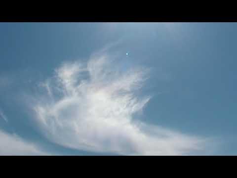 鳥雲・目を開く