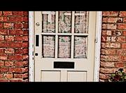 The Ball Green Door