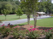 GA families...A day at the park