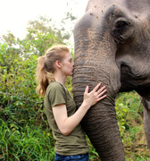 """RBFS presents """"Love and Bananas: An Elephant Story"""""""