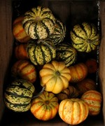 Rooted Nutrition - Local & Seasonal; Autumn Abundance!