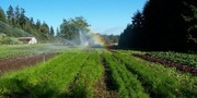 Introduction to Irrigation Systems