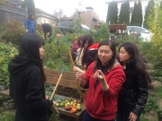 *2017 Village Vancouver Gardening & Permaculture Opportunities Info Session (Free)