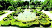 Парка - френската градина в зелено 2