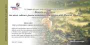 Incontro con la poesia a Modica, tra il fascino architettonico ed artistico delle Chiese di San Paolo e del Carmine