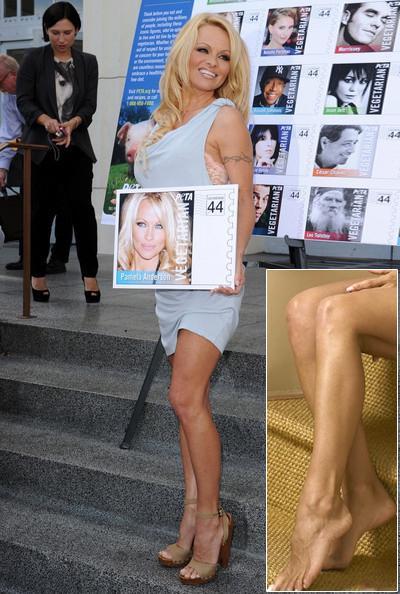 qwelly | chatter | group | ჭორიკანა | ქალბატონები | 20 ცნობილი ქალბატონი ყველაზე დიდი ფეხის ზომით