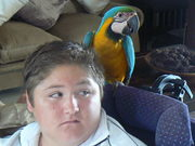 jarryd and his parrot