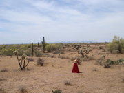 20080514-Desert (25)