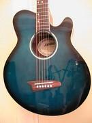 ashton ac. guitar