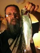 Silversprings trout