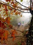 Πορεία στο Φθινόπωρο