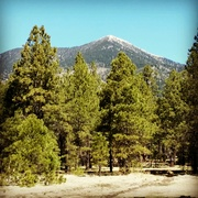 View of Mt Humphries
