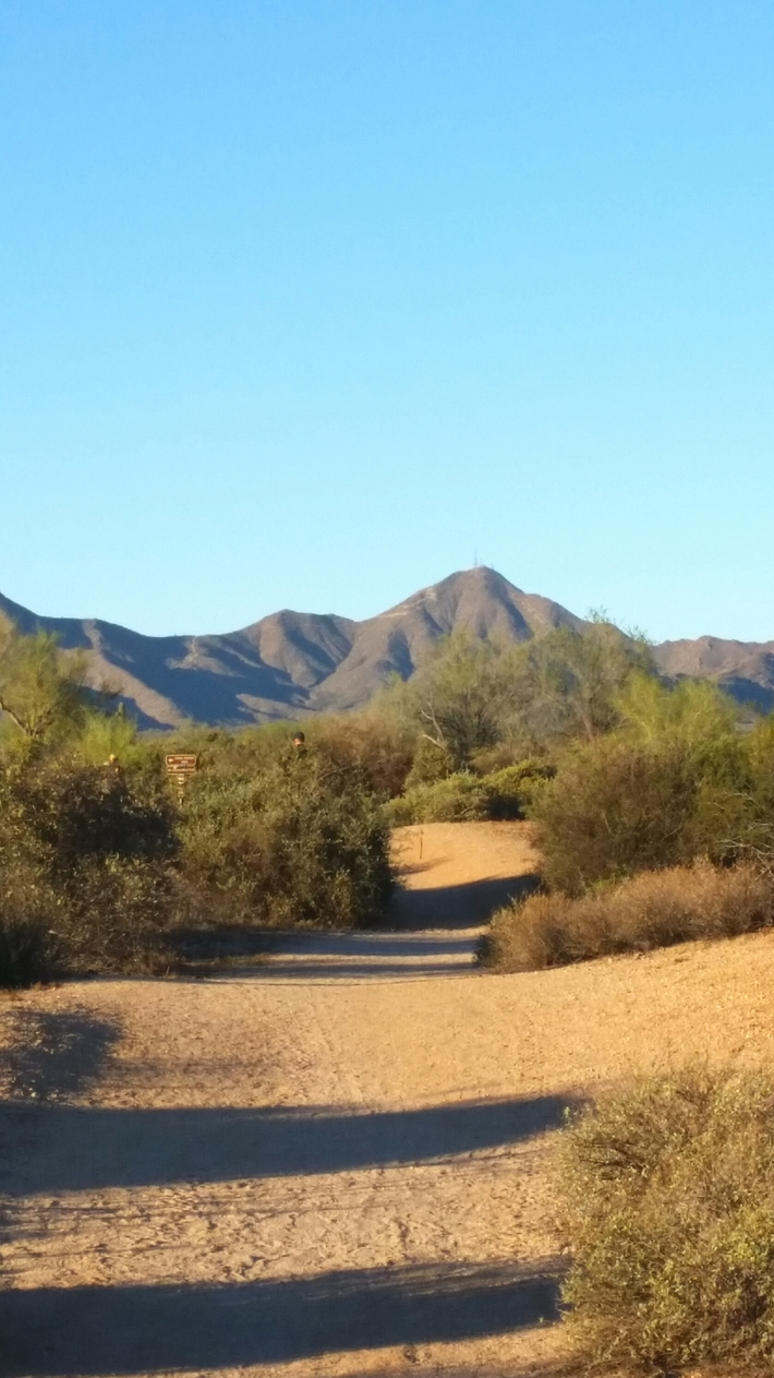A little view from Javelina 100