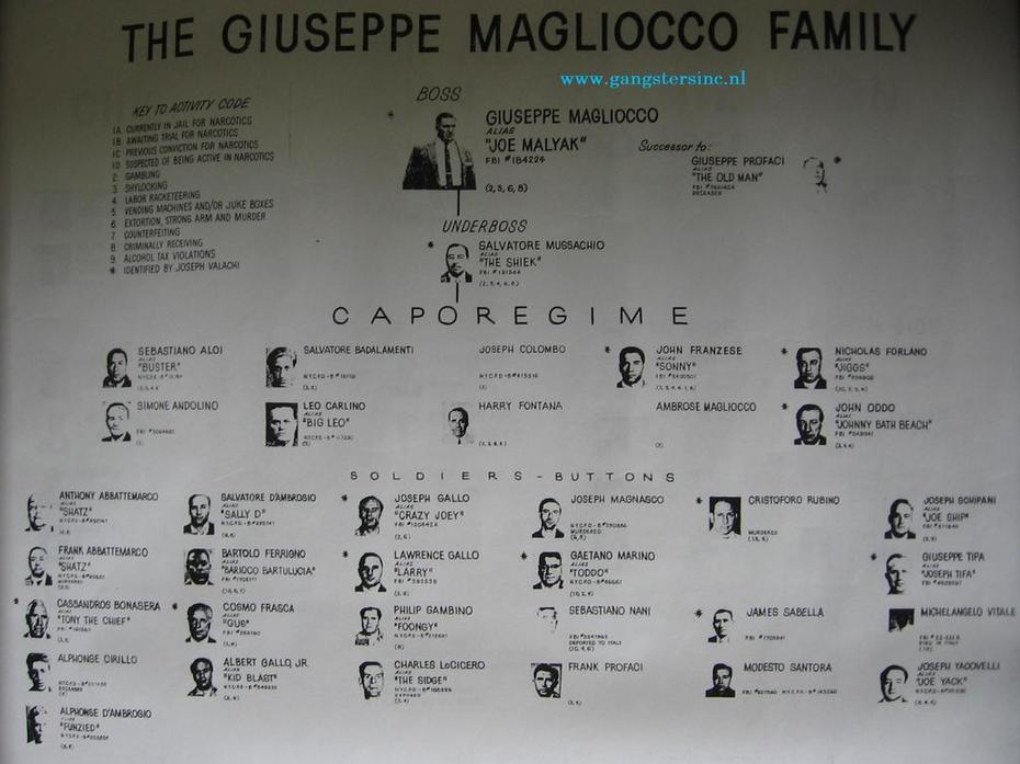 Chart of the Colombo Family