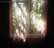 სინათლე ჩვენს ფანჯრებში