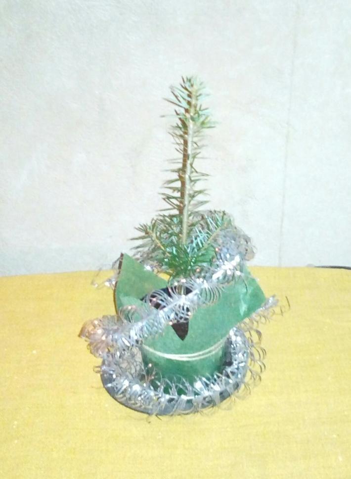 სანუკვარი ნაძვის ხე