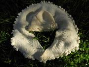 Schal mit Mütze