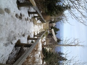 Mt. LeConte Lodge - Nov 2012