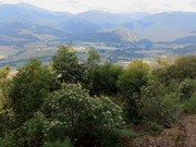 View over Mt Beauty and Kiewa Valley