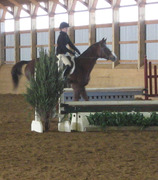 ironstone stables 098