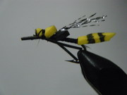 Wasp Fly
