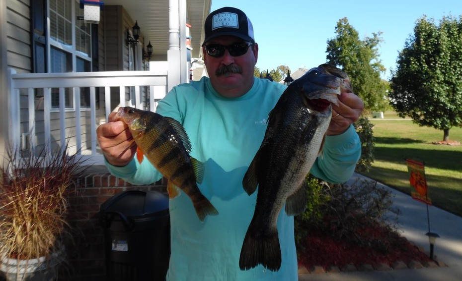 """Trophy Yellow Perch and a 20"""" Largemouth.......10/20/2015"""