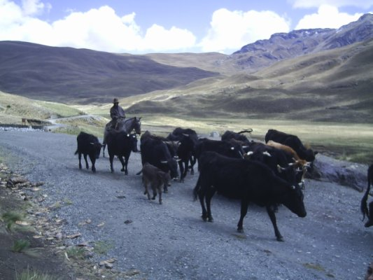 Huaraz - Perú