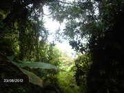 Quebrada Macayapa