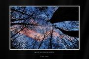 Νυκτερινές φωτογραφίσεις - Night Photography