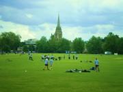 CAEMBRIDGE BEE-HIVE