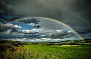Northumberlands Pot of Gold