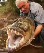 Fans of the River Monsters
