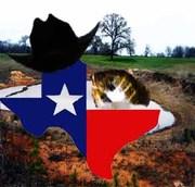 Texas Honey Hole Hunters