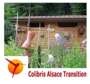Colibris Alsace Transition