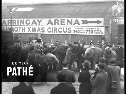 Gordon Richards At Harringay Circus (1947)