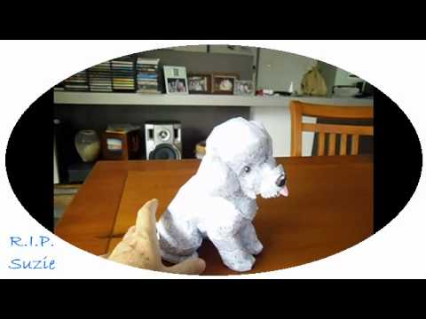 Toy poodle papercraft